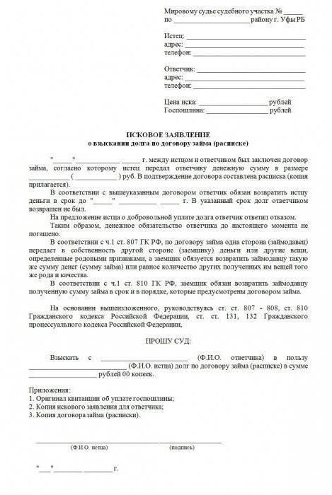 Исковое заявление о взыскании долга по договору займа мфо всероссийское бюро кредитных историй